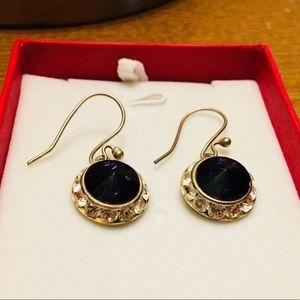 Jewelry - Purple Drop Earrings